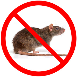 Rodent Control Services | Pest Control Center in Sacramento
